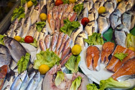 dorado fish: Istanbul fish market