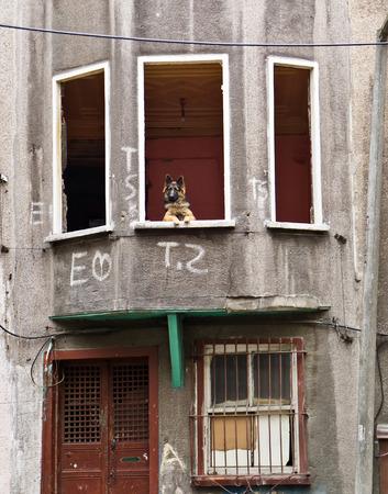 disctrict: Tarlabasi disctrict, disorganized suburbs of Istanbul