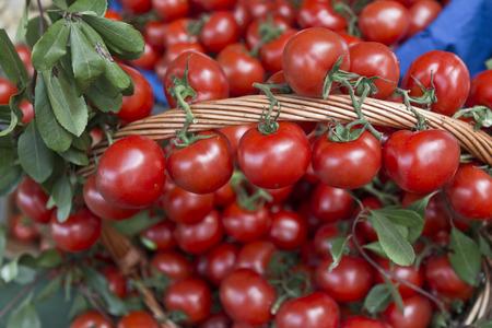 tomatos: Pile of tomatoes Stock Photo
