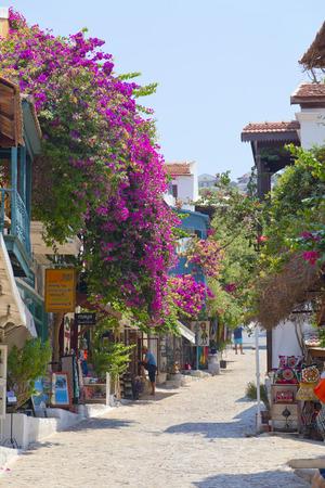 mediterranean forest: Kas town, popular holiday destination near Antalya, Turkey Editorial