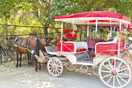 horse drawn carriage: Horse cart in Turkey Stock Photo