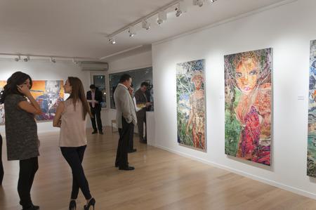 イスタンブール, トルコ - 2012 年 1 月 13 日: 1 月 13 日 Linart ギャラリーにてピナール デュ ・ プレ美術展のオープニングの夜。 報道画像