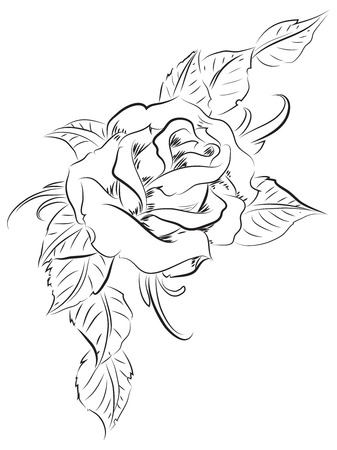 Line art illustration of a beautiful rose with leaves Stock Photo