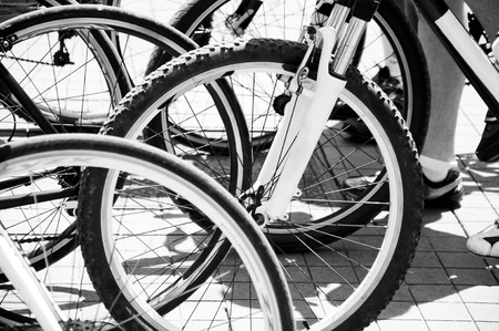 parked bicycles: Group of bicycle tires in black and white