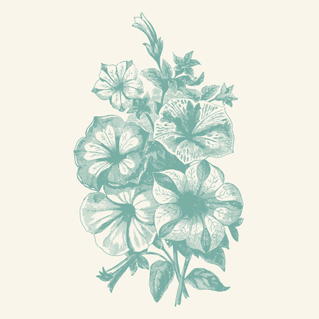 wild mint: Vintage etching vector illustration of a bouquet of begonia flowers