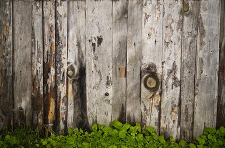 Wooden panels background photo