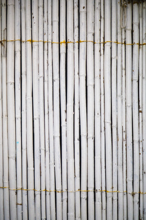 painted wood: White painted bamboo wall