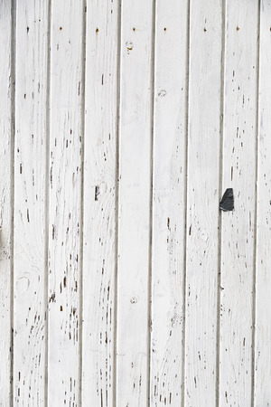 Grunge white wooden panels background photo