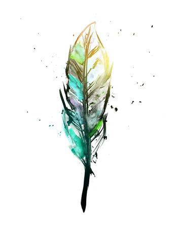 feather quill: Watercolor feather