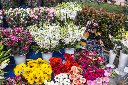 ISTANBUL, Turkey - February 26, 2015: A lady vendor sells flowers in the streets of Kadikoy in Istanbul, Turkey on February 26, 2015. Istanbul generates 21.2% of Turkeys gross national product.