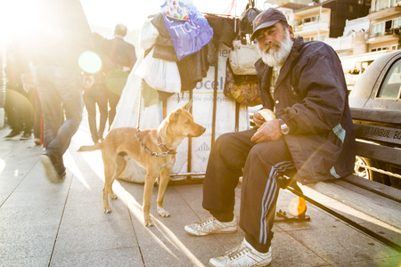 indigence: Istanbul Turkey  May 22 2015: People of Istanbul the homeless especially feed and take care of the abandoned street dogs. Taken in Arnavutkoy coastline Istanbul on May 22nd 2015.