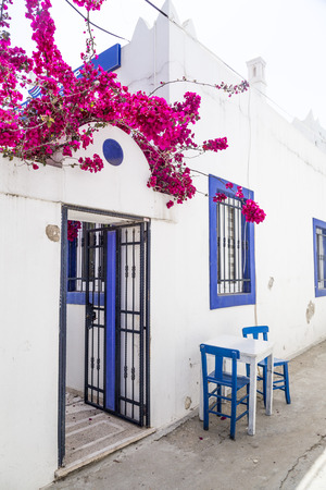 bougainvillea: Classical Aegean architecture with whitewashed houses in Bodrum, Turkish Riviera