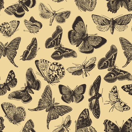 engravings: Seamless pattern design with ephemeral butterfly engravings