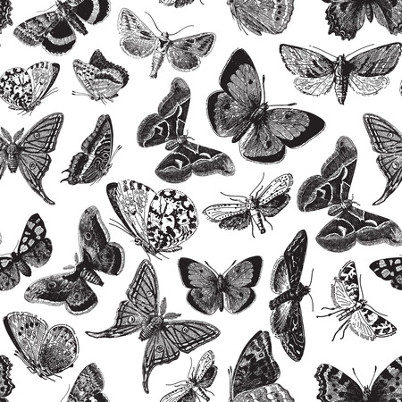 ephemeral: Seamless pattern design with ephemeral butterfly engravings