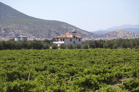 Turkish village near Milas Stock Photo