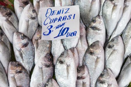 sparus: Gilt-head breams in Turkish fish market