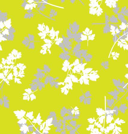 perejil: Modelo inconsútil del vector, fondo abstracto con hojas de perejil, hierbas de primavera, el concepto de alimentos. Vectores