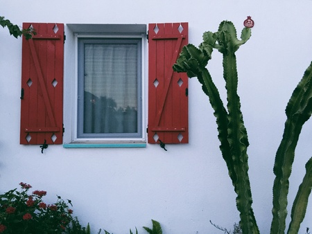 detail: Mediterranean house detail, window with red wooden shutters and cactus plant, whitewashed house