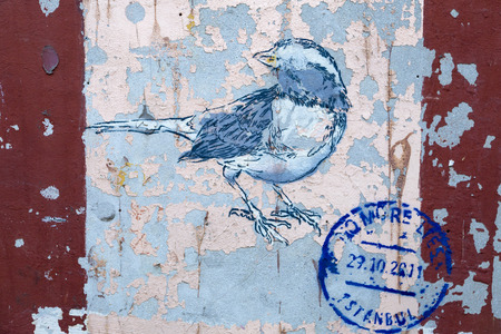 urban art: Bird graffiti on grunge peeled wall, urban art detail