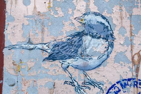peeled: Bird graffiti on grunge peeled wall, urban art detail