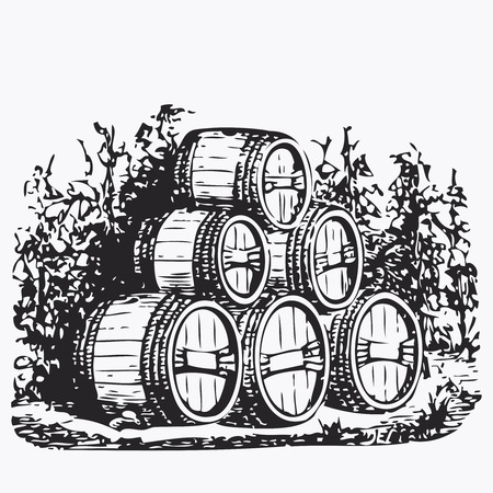 old vintage: Vintage barrel engraving, ephemeral vector illustration