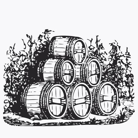 vines: Vintage barrel engraving, ephemeral vector illustration