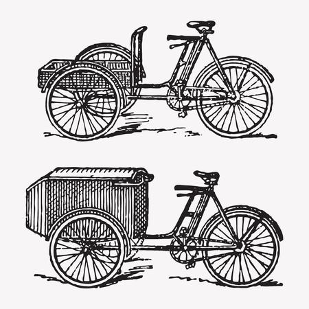 tuk: Vector engraving rickshaw bikes, two traditional rickshaw or tuk tuk bicycles, vintage transportation. Illustration