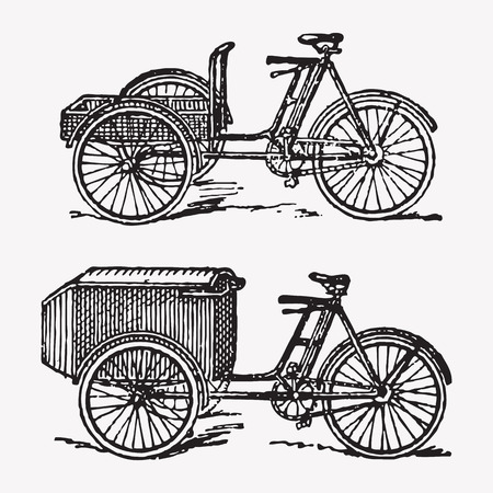 three wheel: Vector engraving rickshaw bikes, two traditional rickshaw or tuk tuk bicycles, vintage transportation. Illustration