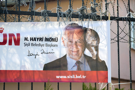 proclaim: Istanbul, Turkey - March 4, 2017: Announcement banner of Mayor of Sisli, Istanbul about the municipalitys support for street animal. The banner says Lets grow love together.
