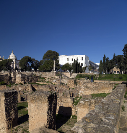 antiquity: Ancient remains of Carthage civilization in the museum of Carthage, Tunis, Tunisia