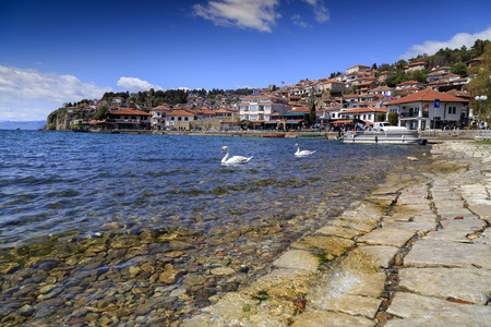 Ohrid, Macedonia - April 8, 2017: Coastal view of Ohrid, a small city by the Lake Ohrid in southwest of FYR Macedonia. Swans on the lake.
