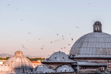Seagull on the dome and the cityscape of Istanbul from Suleymaniye Mosque overlooking the Golden Horn or Halic, the European side of the Bosphorus.