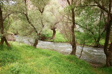 Ihlara Valley photo