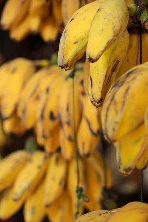 riped: riped bananas Stock Photo