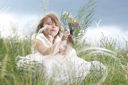 Fairy-tale beautiful little girl on a lawn with the field flowers Stock Photo - 13845827