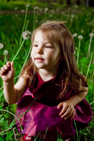 Beautiful little girl on a lawn with dandelions Stock Photo - 13840202