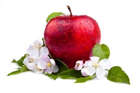 Una jugosa manzana roja y flores sobre un fondo blanco Foto de archivo