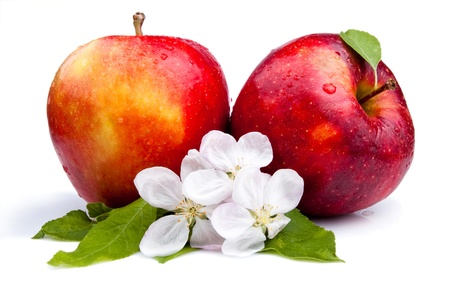 Two Juicy Red Apple and flowers on a white background