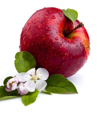 One Juicy Red Apple and flowers on a white background