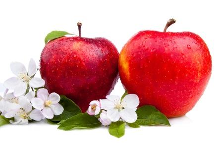 manzana agua: Dos jugosa manzana roja con flores y gotas de agua sobre un fondo blanco