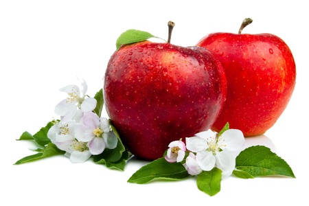 Two Juicy Red Apple with flowers and water droplets on a white background photo