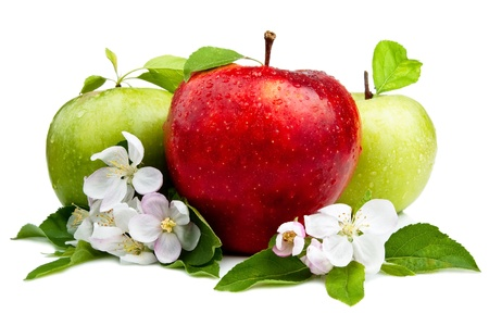 Red Apple in Front of Two Green Apples with flowers, Leaf and water droplets on a white background