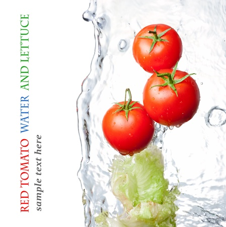 Rinsed tomatoes and lettuce photo