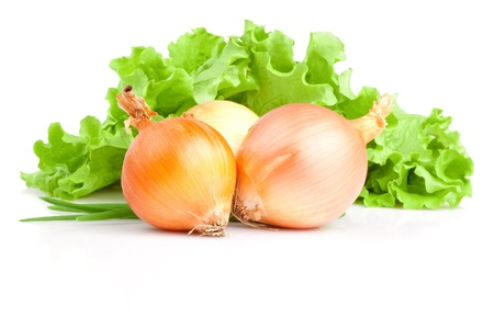onion peel: Bulbs of onion, Scallions and Fresh lettuce bunch isolated on a white background