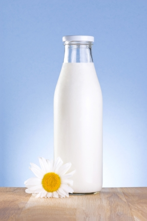 Bottle of fresh milk and chamomile flower is wooden table on a blue background photo