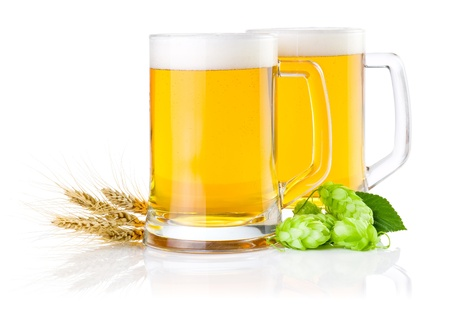 Two glasses of fresh beer with Green hops and ears of barley isolated on a white background photo