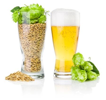 brew beer: Vidrio de cerveza fresca y una taza llena de cebada y l�pulo aislado sobre fondo blanco