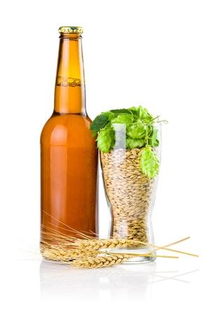 cebada: Brown botella de cerveza, una copa llena de cebada y lúpulo, los oídos del trigo aislados en fondo blanco