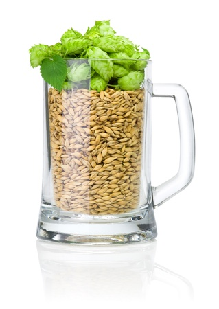 Mug for beer full of barley and hops isolated on white background photo