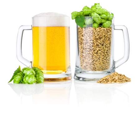 Two Mug  fresh beer and full of barley hops, isolated on white background photo